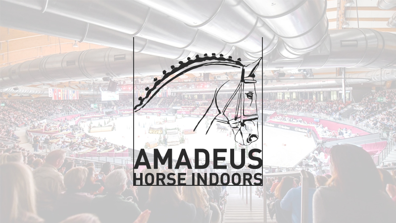 Amadeus-Horse-Indoors
